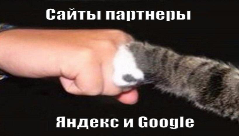 партнерство с яндекс и google
